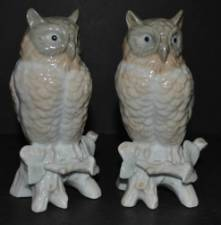 A Pair of China Figures of perched owls on white and brown ground